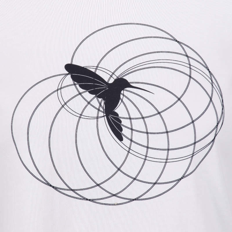 hummingbird totem graphic constructed from ellipses and circles