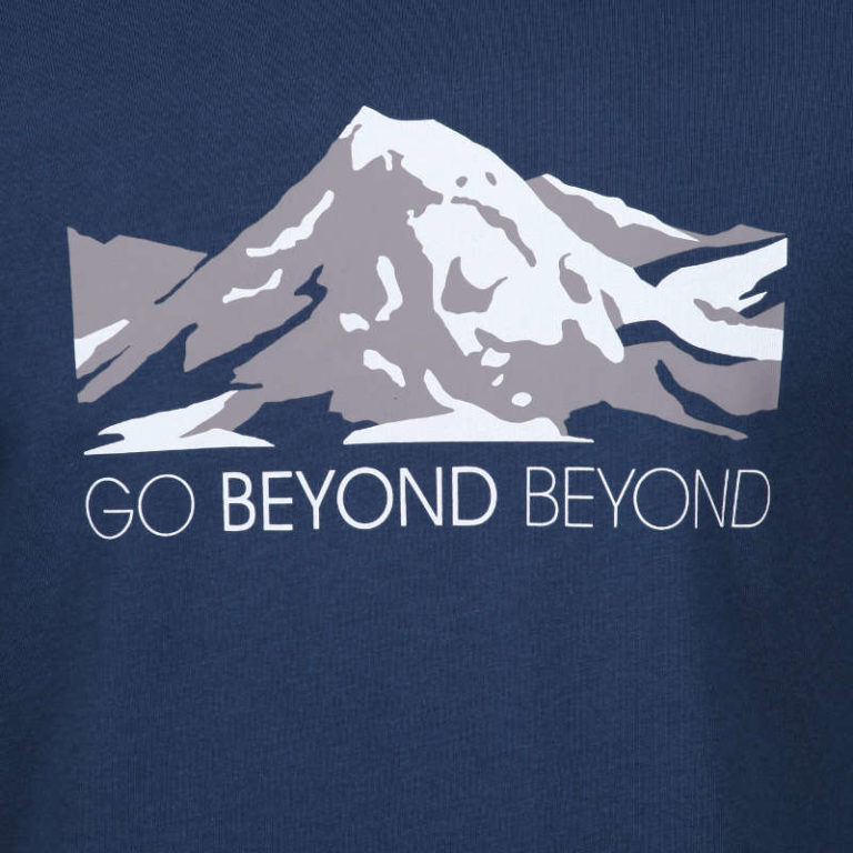 Detail of 'Go Beyond Beyond' graphic showing the face of Buddha layered within the snow.